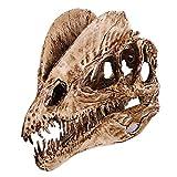 VOANZO Resina Crafts - Figura decorativa de dinosaurio de doble corona, diseño de calavera de dinosaurio, diente de dinosaurio, fósil, accesorio de fotografía, herramienta de enseñanza para el hogar