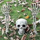 fenihooy Calaveras de Halloween de Aspecto Realista , Calavera Humana de Esqueleto Cráneos Decorativos de Plástico Esqueleto de Calavera,para Casas embrujadas/Halloween/escenas de cementerios